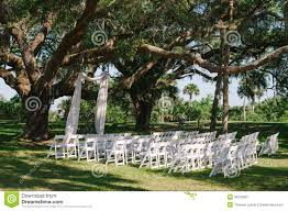 100 wedding trees discount wedding guest book trees 2017