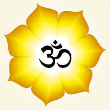 Lotus Flower With Om Symbol - om symbol on pink lotus flower vector free download