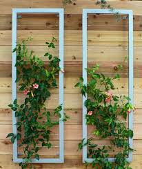 Trellis On Beautiful Garden Wall Trellis 17 Best Ideas About Wall Trellis On