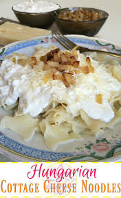 Noodle Kugel Cottage Cheese by 10 Best Hungarian Noodles With Cottage Cheese Recipes