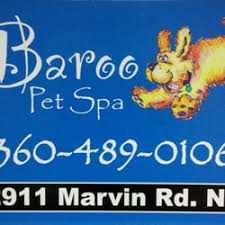 senior citizens discount haircuts in olympia baroo pet spa 22 reviews pet groomers 2911 marvin rd ne