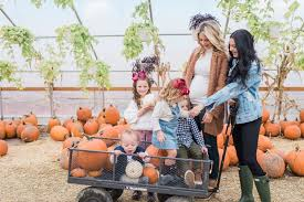 pumpkin patch maternity trip to the pumpkin patch ivory