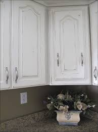 Glass Kitchen Cabinet Doors Kitchen Conestoga Cabinets Glass Kitchen Cabinet Doors Custom