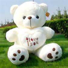 big teddy 50cm large big teddy soft plush i you