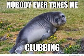 Baby Seal Meme - sad seal meme memes pinterest meme humor and laughter