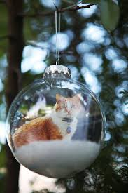 Clear Christmas Ornaments To Decorate by Best 25 Clear Christmas Ornaments Ideas On Pinterest Ornaments
