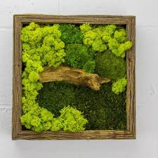 green wall decor best vertical wall decor products on wanelo