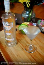 martini shaker shaking 20 best smirnoff sorbet light mango passion fruit images on
