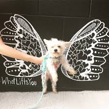 nashville whatliftsyou wings kelsey montague art img 2840 img 2806