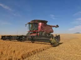 market jm grain montana north dakota