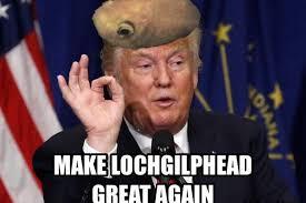 Scottish Meme - scottish goldfish goes viral after becoming star of hilarious meme