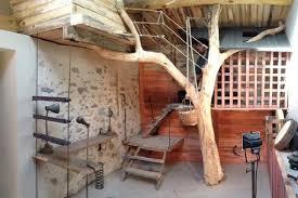 cabane pour chambre cabane l arbre entre dans la chambre esprit cabane idees