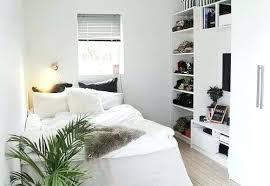 une plante dans une chambre plante chambre une plante dans la chambre de bebe walkerjeff com