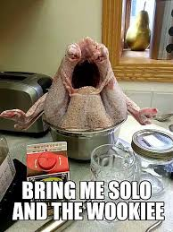 Turkey Day Meme - 20 funny thanksgiving day photos comics and memes