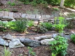 Wall Gardening System by Gardening On Slopes Slopes Can Be Dry And Need Irrigation