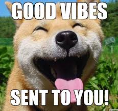 Good Vibes Meme - happy dog good vibes sent to you weknowmemes