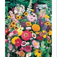 roll out flower garden walterdrake instant roll out flower garden the outdoors