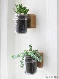 Plant Home Decor Fresh Indoor Plant In Best Clear Hanging Mason Jar Close Square
