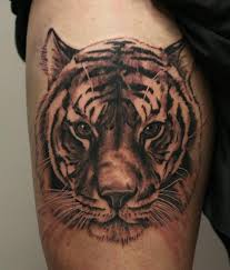tiger on thigh by anders grucz