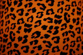 animal print wallpaper for bedroom cheetah print bathroom decor bedroom leopard wall stickers