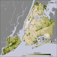 New York vegetaion images 7ageography new york city vegetation jpg