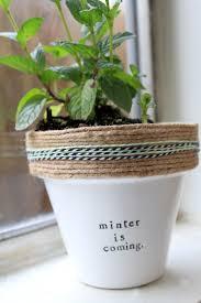 232 best indoor gardening images on pinterest indoor gardening