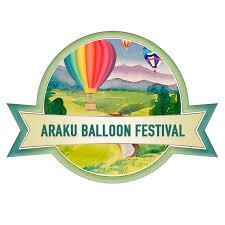air balloon ride in india air balloon rides air ballooning