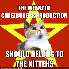 I Can Has Cheezburger Meme - i can has cheezburger memes page 156 funny internet cats