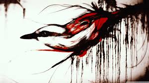 bird sketch 4k hd desktop wallpaper for 4k ultra hd tv