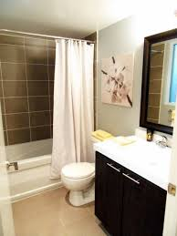 basement bathroom ideas with big mirror nice oainting small shower
