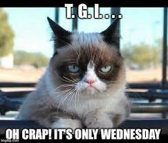 Grumpy Cat Monday Meme - grumpy cat clipart job pencil and in color grumpy cat clipart job