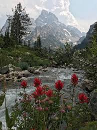 grand teton national park grand teton national park is breathtaking campingandhiking