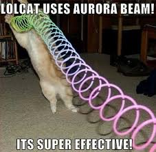 Lol Cat Meme - lolcat meme aurora effective memes comics pinterest