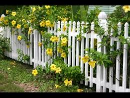 40 beautiful garden fence ideas youtube