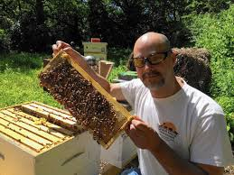 beekeeping in kendall county residential areas approved aurora
