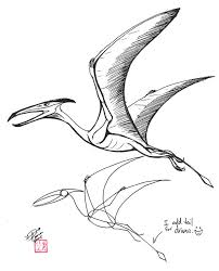 drawn dinosaur pterodactyl pencil and in color drawn dinosaur
