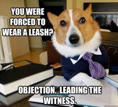 boxer dog jokes 25 funny dog memes