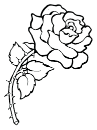 coloring pictures of hibiscus flowers hibiscus flower coloring pages hibiscus flower coloring pages