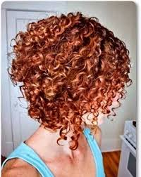 stacked in back brown curly hair pics short curly bobs 2014 2015 bob hairstyles 2017 short
