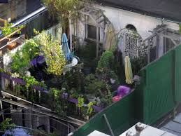 rooftop garden plants getpaidforphotos com
