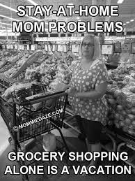 Stay At Home Mom Meme - stay at home mom problems grocery shopping this michigan life