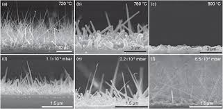the mechanisms of platinum catalyzed silicon nanowire growth