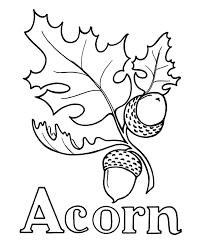 coloring page acorn coloring page letter a is for acorn coloring