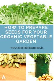 how to prepare seeds for your organic vegetable garden simple
