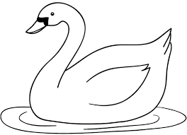 gambar sketsa hewan angsa dp bbm