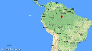 south america map rainforest top 14 amazing rainforests in the world biology explorer