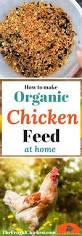Raising Meat Chickens Your Backyard by 1079 Best Chickens For Emma Images On Pinterest