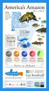 aww infographic 2 0 awwareness