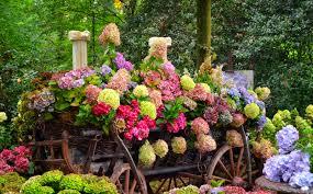 flowers flowers trees lovely beautiful garden freshness cart