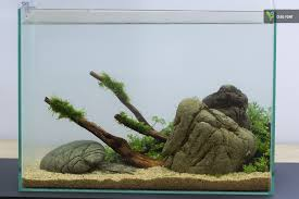 19 liter nano tank 1 day old aquascaping freshwater oleg